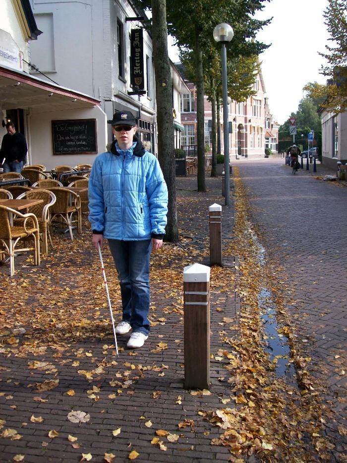 Foto van gemarkeerde paaltjes op trottoir.